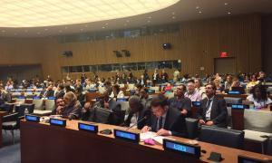 Andorra participa en la conferència sobre els drets dels discapacitats