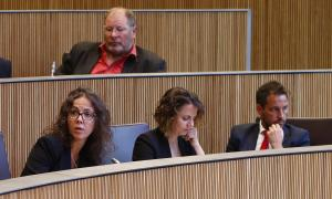Els parlamentaris socialdemòcrates en una sessió del Consell General.