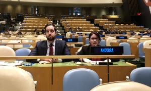 La cap de l'àrea de Polítiques d'Igualtat, Mireia Porras, durant la seva intervenció a la reunió a la seu de les Nacions Unides.