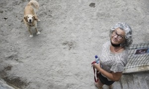 Un gos amb la propietària en un pipican d'Escaldes-Engordany.