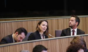 El PS vol suprimir les mancomunitats del projecte de llei de col·laboració