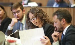 El grup socialdemòcrata havia proposat la creació d'una comissió especial.