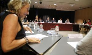 Martí aposta ara per reunions sectorials i més específiques