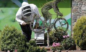 Un apicultor treballant en un rusc.
