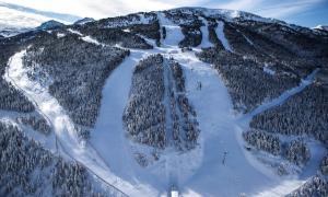 L'esquiadora resident a Barcelona de 27 anys va morir a les pistes de Soldeu.