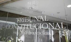 El Tribunal Constitucional té un termini de dos mesos per pronunciar-se sobre els recursos.