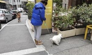 Una noia recollint els excrements de la seva mascota al carrer.