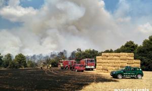 Cremen 15 hectàrees de vegetació a Montargull, a Artesa de Segre