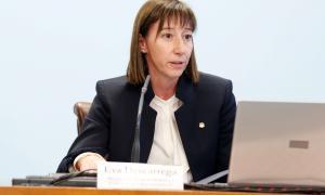 Descarrega diu que l'informe de la consultiva es va fer segons la norma