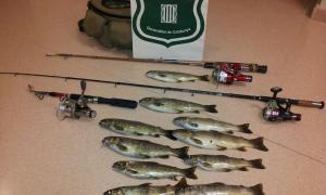 Denunciats tres pescadors de truites furtius al Pallars Sobirà