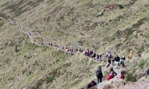 Imatge de la corrua de visitants a Tristaina captada per un excursionista.