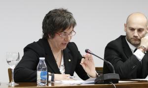 PS+I vol que les minories prenguin part en la reforma competencial