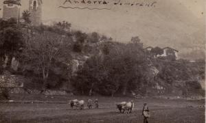 Cap al 1900: el colomer de casa Mateu, a sota del campanar de Sant Esteve. Atenció als bous treballant al que avui és Prat de la Creu.