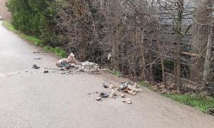 Resultat de l'acció de neteja d'ahir als afores de la ciutat