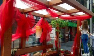 Andoflora s'inaugura avui a les dotze del migdia a la plaça de les Fontetes