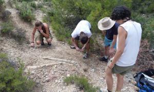 La UAB tindrà dos nous campus d'arqueologia i paleontologia