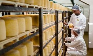 La fàbrica de la Cooperativa Cadí, un dels emblemes del sector lacti de la comarca.