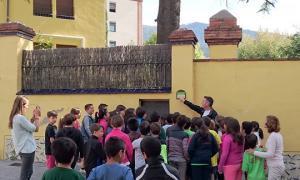 Alumnes de tres centres educatius de la Seu coneixen els arbres singulars