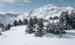 Ordino Arcalís tanca l'hivern amb un 11% més d'esquiadors