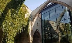 Biblioteca de Sant Agustí.