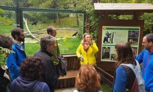 Viatge per compartir experiències  pel que fa a la gestió de l'os bru