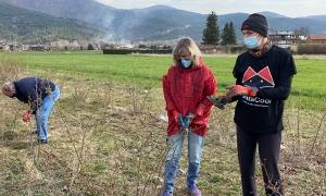 La ultrafondista i emprenedora Emma Roca, una de les impulsores de Gratacool, mostrant les tasques de poda del roser silvestre.
