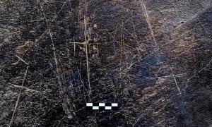 Creus votives i estels localitzats a la balma del solà d'Acavell i que Casamajor identifica amb els ressenyats per Viñas al catàleg 'Andorra Arqueològica'.