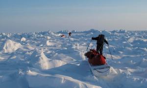 'Viatge al Blanc: Últim grau al Pol Nord' de Jordi Canal-Soler.