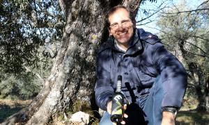 Ivan Caelles, productor de l'oli Erm, mostra una ampolla als peus d'un oliver.