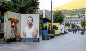Vianants observant la mostra 'Do you like your dog' a l'avinguda Carlemany.