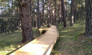 El parc natural de l'Alt Pirineu obre el primer itinerari adaptat