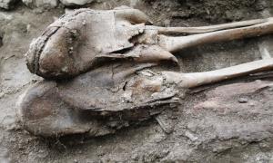 Andorra, Peacock, Soldeu, excavació, Benet, Regirarocs, Remolins, cementiri, II Guerra Mundial, passadors, Armentano