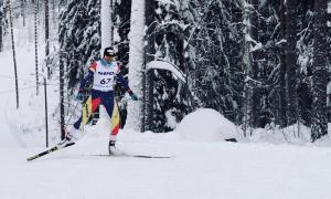 Les alegries de l'esquí de fons