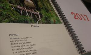 Andorra, Casi Arajol, impremta Principat, Puig i Salarich, Sergi Mas, poesia