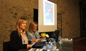 Andorra, Gelabert, Planelles, pressupost, inversió, despesa, Promoció cultural, política lingüística, Patrimoni cultural