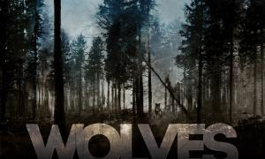 Andorra, Wolves, curt, Rodríguez Aremy, Illa Carlemany, estrena director, cine