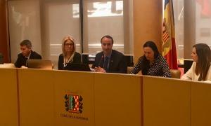 Un moment de la sessió del Consell de Comú celebrada ahir.