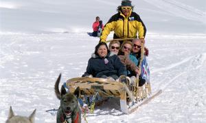 El trineu arrossegat per gossos, una de les activitats que es poden realitzar