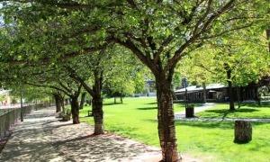 Vista del Parc Central.