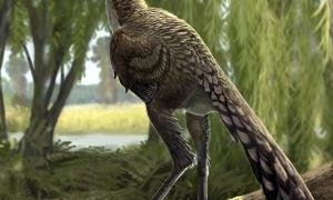 Recreació de l'aspecte en vida de la nova espècie que els paleontòlegs acaben de descriure