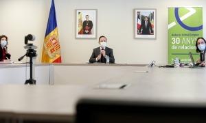 La reunió ampliada de l'Acord polític per a la UE s'ha fet de forma telemàtica.