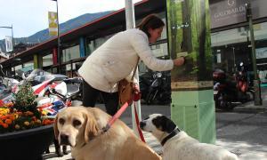 Una propietària de gossos fent servir la màquina que premia els animals amb una galeta si hi miccionen.