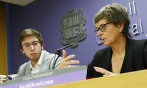 Els consellers socialdemòcrates Roger Padreny i Susanna Vela van presentar la proposta d'Estatut de l'artista el 31 d'octubre.