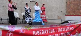 L'actuació de flamenc a càrrec de la companyia Embrujo.