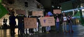 Els joves de Fridays for Future amb els cartells de protesta.