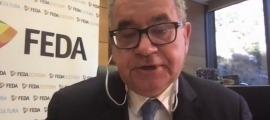 El director general de FEDA, Albert Moles, durant la roda de premsa telemàtica.