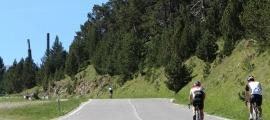 Carretera de Montaup abans d'arribar al Roc del Quer.