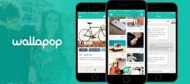 L'anunci apareixia a la plataforma de compra-venda Wallapop.