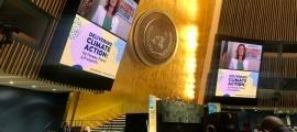 Un moment de la intervenció telemàtica de Calvó davant l'ONU.