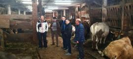 La ramaderia preocupa a la candidatura de Demòractes.
